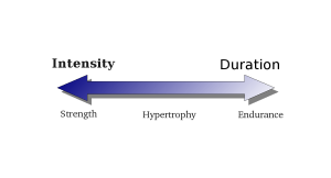 Strength endurance continuum